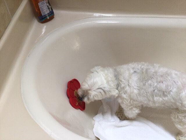 K9 Bath Buddy image